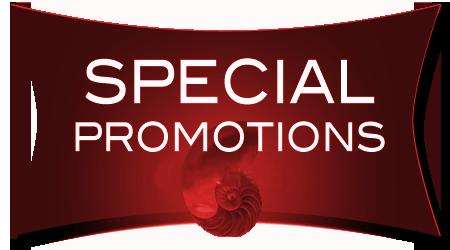 Hasil gambar untuk special promotion png